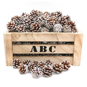 Natural Real Genuine Pine Cone Christmas Tree Hanging Decorations Festive Xmas
