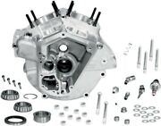Sandamps Cycle Super Stock Alternator Style Crankcase 3.625in. Bore Natural