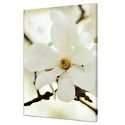 Beautiful White Magnolia Flowers Branch Home Decor Canvas Print Wall Art Picture