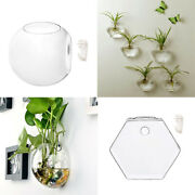 Wall Mounted Hanging Glass Vase Terrarium - Set Of 4, Clear Ball Hexagon Plant
