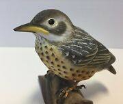 Hand Carved Baby American Robin