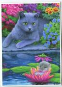 Aceo Gray Cat Mouse Dreaming Sleeping Water Lily Pads Lotus Garden Flowers Print