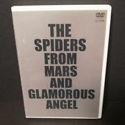 The Spiders From Mars And Glamorous Ange
