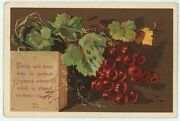 Antique Perfect Peace Bible Verse Red Currant Berry Bush Chromolithograph Print