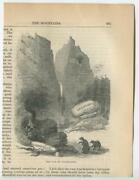Antique Allegorical Bears Van Of Civilization Old Medicine Products Small Print