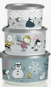 Tupperware Peanuts Holiday Canister Set Charlie Brown Snoopy 2 4 6 Cup New