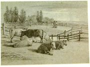 Landscape Cattle Resting By Their Corral Wm Witherington Pencil C1810-20