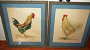 A Pair Rooster Water Color By French Listed Artist Anne Marie Joly C1958