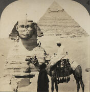 Stereoview Gizeh Sphinx And Pyramid.