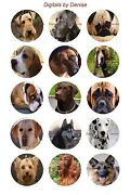 Dogs 1 Circles Bottle Cap Images. 2.45-5.50 Free Shipping