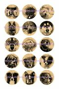Dogs On Newspaper 1 Circles Bottle Cap Images. 2.45-5.50 Free Shipping