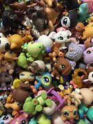 Littlest Pet Shops And Accessories