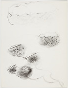 Original Dale Chihuly Lithograph Untitled Black And White 2
