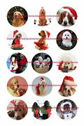 Christmas Dogs 1 Circles Bottle Cap Images. 2.45-5.50 Free Shipping