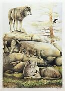 Robert Pow Wolf Family 1995 | Signed Print | Canadian Wildlife | Make An Offer