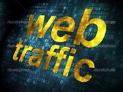 Will Drive Unlimited Super Targeted Traffic, 3 Day Delivery.