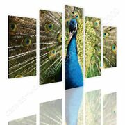 Peacock Bird In Spring By Split 5 Panels | Ready To Hang Canvas | 5 Panels Wall