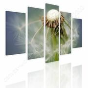 Dandelion In The Spring By Split 5 Panels | Ready To Hang Canvas | 5 Panels Wall