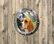 Pet Fence Plastic Dome Peek Bubble Window For Dogs Kids Animals Clear Tinted