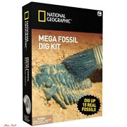 Fun Learning Toys For Kids National Geographic Mega Fossil Mine Dig Up Real New