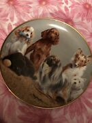 Franklin Mint Aspca Top Of The Class Dogs Collector Plate Collie Westie Poodle