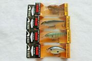 Lot Of 6 Rapala Scatter Rap Lip Shad Floating-diving Spring Fall 5/16 And 1/4 Oz.