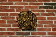 Lynx Animals Ornament Wood Carved Plaque Wall Hanging Art Work Home Decor