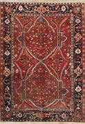 Antique Vegetable Dye Old Rare 7x10 Wool Oriental Rug 9and039 10 X 6and039 10