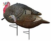 Life Like Gobstopper Jake And Hen Hunting Decoy Combo Pack Of 2