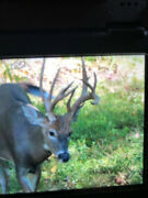 Hunting 2019 Trophy Whitetail Deer Buck Hunts Pa Guided