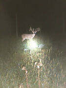 2019 Trophy Whitetail Deer Hunt Central Pa Guided