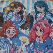 Used Go Princess Precure Anime Japan Throw Blanket Lawson Limited Pretty Cure