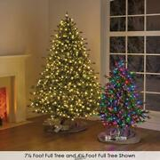 New York City Norway Spruce 9.5and039 Multicolor Lights Christmas Tree