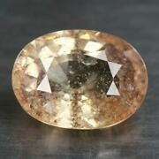4.43 Cts_antique Rare Collection_100 Natural Ceylon Padparadscha Sapphire
