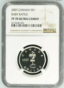 2007 S1 Canada Silver Baby Rattle Ngc Pf70