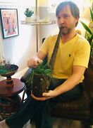 Vtg Huge 2 Ft Hand Carved Wooden Tobacco Pipe Planter Wall Hanging Mid Century