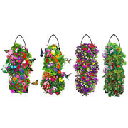 Hanging Flower Garden Seeds And Soil Butterfly Hummingbird Shady Annual Petunia