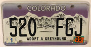Greyhound Dog License Plate Race Dog Racing Pet Puppy Lover Friendly Adoption