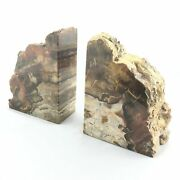 Big Bookends Slice Of Fossil Wood Silicified Extra Quality
