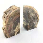 Big Bookends Slice Of Fossil Wood Of Madagascar Silicified Extra Quality