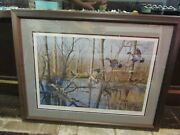 Ducks Unlimited Flooded Timber Woodies Richard Plasschaert Signed Limited Ed