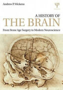 A History Of The Brain From Stone Age Surgery To Modern Neuroscience.