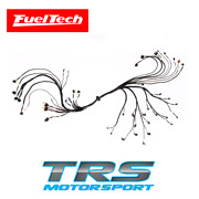 Fueltech Ls550 V8 Complete Harness With Connector Kit For Ft550 Ft550lite Gm Ls