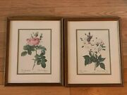 Set 2 Roses Vintage Pictures Art Print Under Glass Wood Frames 14x17 And 8x11 In