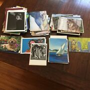 150+ Variety Lot Of Note And Greeting Cards No Envelopes Nice Condition Assorted