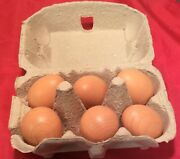 Erzi Wooden Grocery Shop Merchandise 6 Brown Eggs Quality Safe German Made Toys