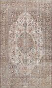 Antique Muted Distressed Traditional Area Rug Hand-knotted Oriental Carpet 8x11