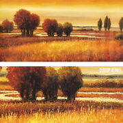 54wx27h Golden Reflections I By Gregory Williams - Trees Sun Choices Of Canvas