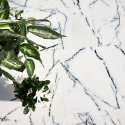 Calacatta Viola Polished White Marble Wall And Floor Tiles Sample 610x305x10 Mm