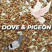 Pigeon Dove Seed Wild Bird Feed Food Resealable Choose Size